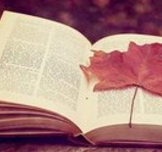 宣言韩国语教育