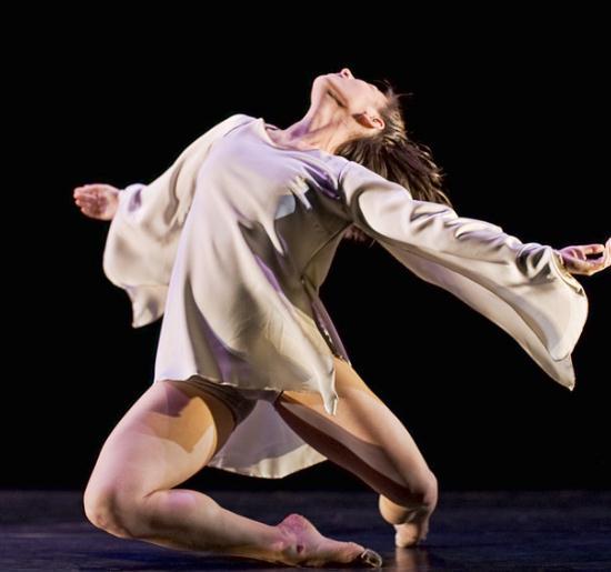 艺龙舞蹈棕色