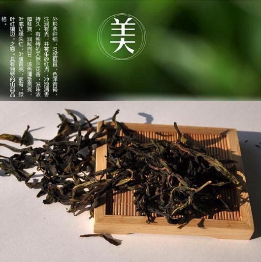 凤凰单枞茶 单从