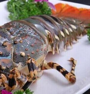 伍哥蒸鲜蒸汽海鲜海鲜龙虾