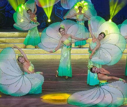 艺龙舞蹈绿色
