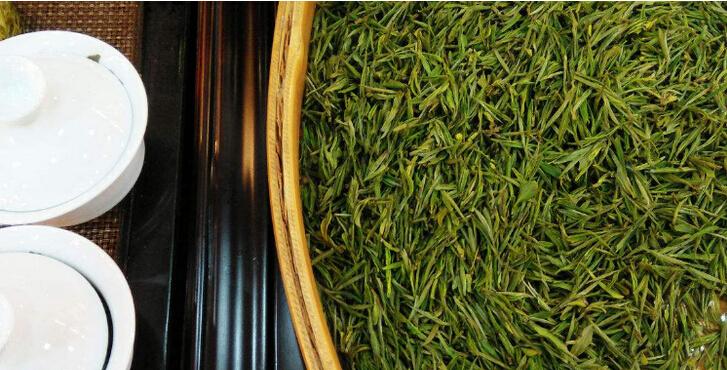 安吉茶茶叶