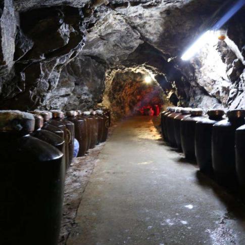 洞藏酒文化园