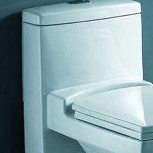美标马桶水箱盖通用