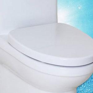 法恩莎马桶座便器白色