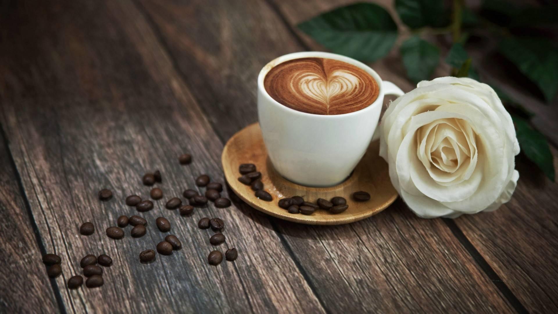 巴洛克咖啡新款上市