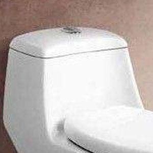 箭牌马桶水箱盖白色