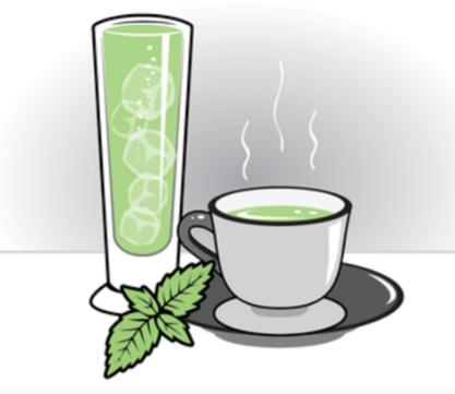 Fresh tea设计loge