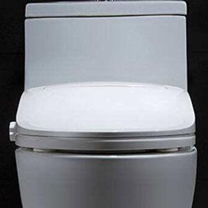 碧维马桶盖白色
