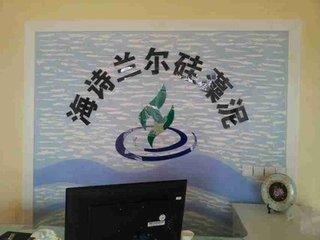 海诗兰尔硅藻泥