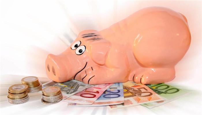 大唐投资大猪
