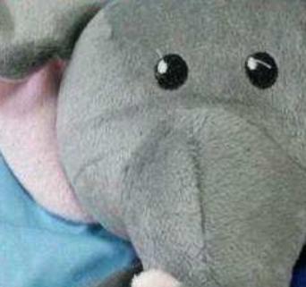 小象母婴用品玩偶