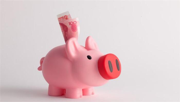 安邦理财猪猪