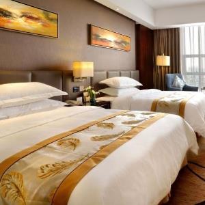 阿鲁帕酒店标准间