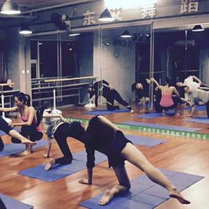 东艾舞蹈瑜伽教育