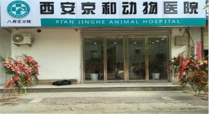 京和动物医院