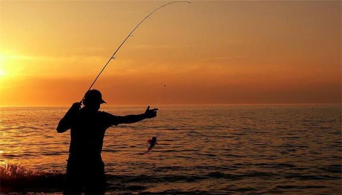 化绍新钓鱼用品钓鱼