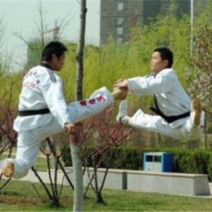 新武道跆拳道腾空飞脚
