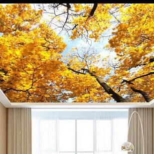 绿都健康定制吊顶酒店