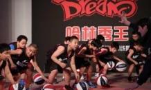 哈林秀王籃球訓練營