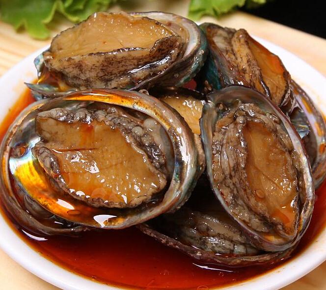 鱼陶陶鲍鱼