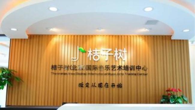 桔子树艺术培训机构
