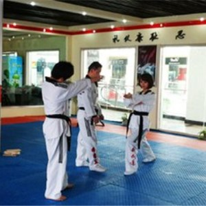 新武道跆拳道室内练习