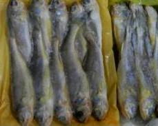 杭州农副产品物流中心冷冻食品交易市场金峰食品商行