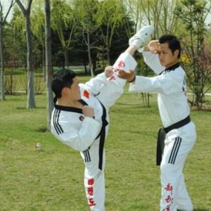 新武道跆拳道室外对打练习