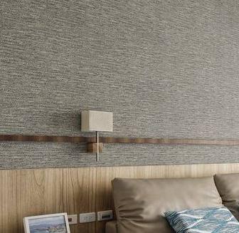 杨子墙纸现代