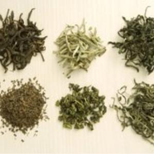 开茶叶店六种茶叶