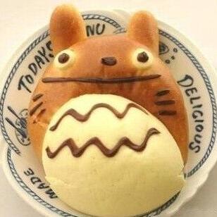 澳美洪培龙猫