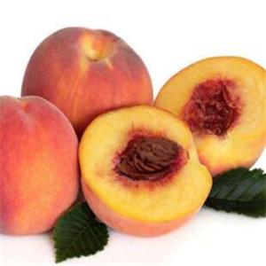 昂昂果业桃子
