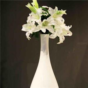 浪漫滿屋家居飾品簡約花瓶
