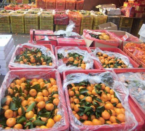 标记水果批发行橘子
