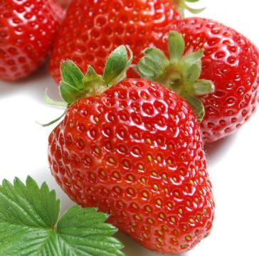 艾沃超级水果店草莓