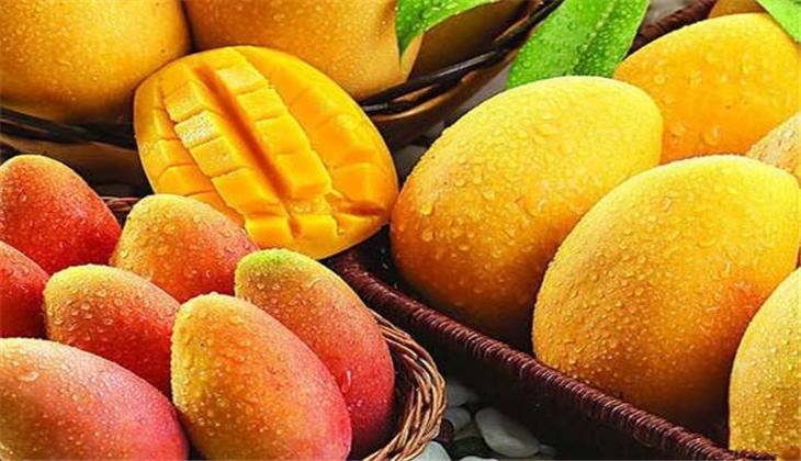 阿瓜果园芒果