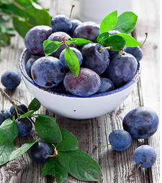艾沃超级水果店蓝莓