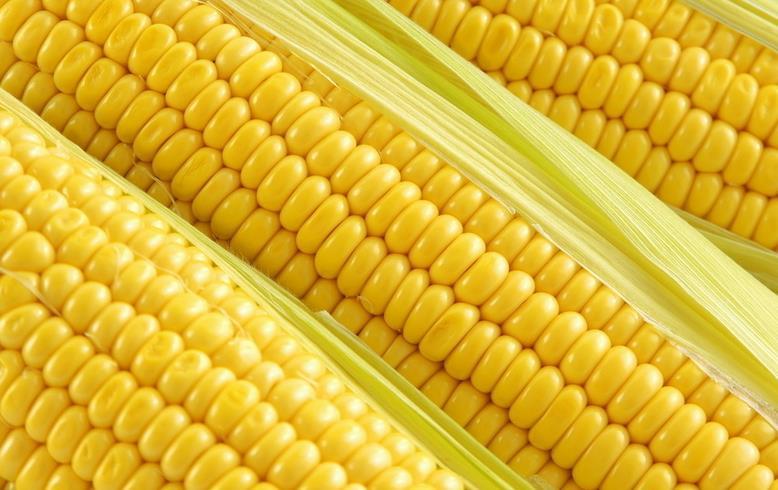 半亩田玉米汁放心