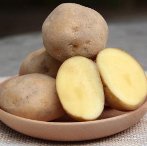 北林富硒农产品销售土豆