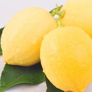 鲜果多柠檬