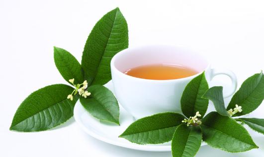 碧水源茶楼加盟优势