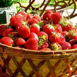 百果香便利店草莓