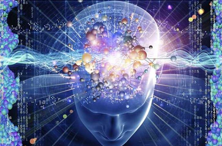 泽凯右脑潜能开发大脑