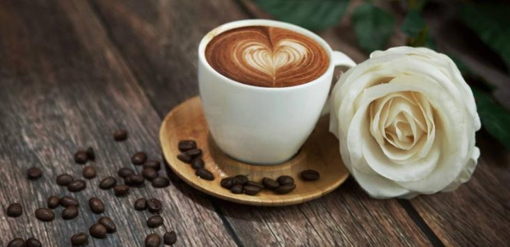 艾蜜莉斯咖啡店休闲