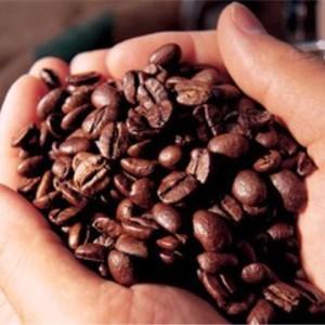 半客咖啡咖啡豆