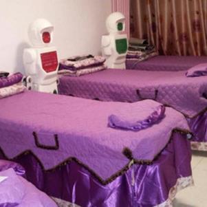 机器人减肥紫色