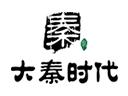 大秦传媒广告投放品牌logo