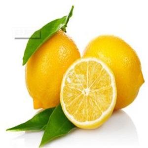 订购网鲜橙