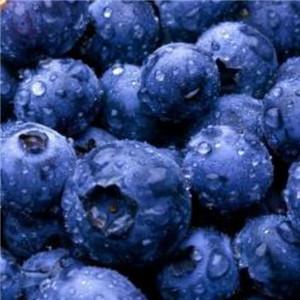 鲜果e茶蓝莓
